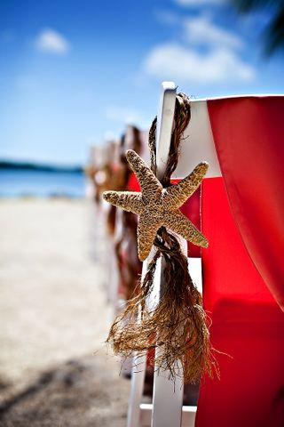 Starfish chairs