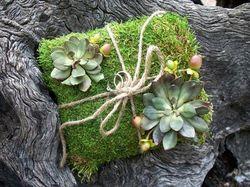 Moss covered ring bearer pillow