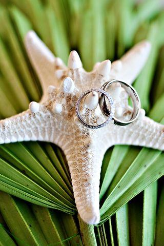Seltzer rings